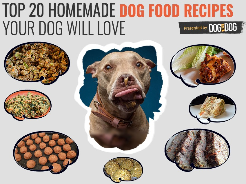 Top 20 healthy homemade dog food recipes your dog will love if youre looking for recipes your dog will love that are super healthy and nutrient rich youve come to the right place forumfinder Gallery