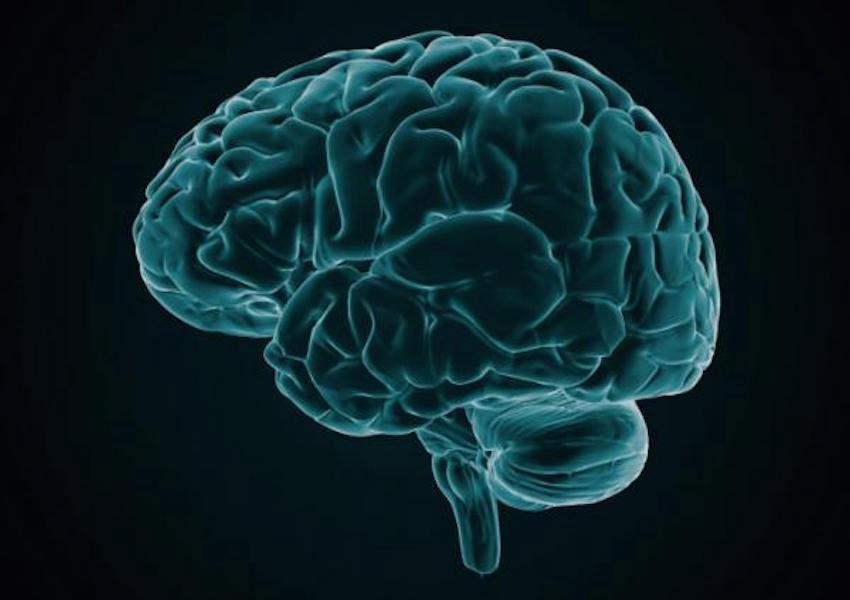 Shared Brain Region Losses Across Six Mental Illnesses