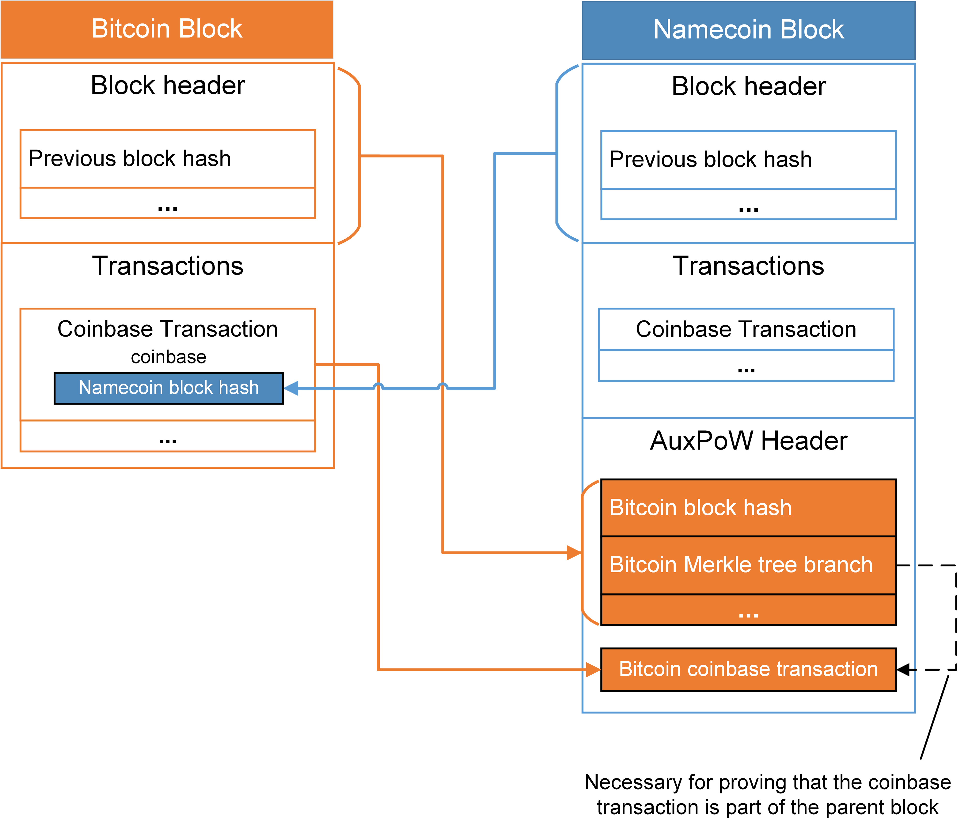 Structure of merged mined blocks in Namecoin. The block hash of the to-be-mined Namecoin block is included in the coinbase field of the Bitcoin block. Once a fitting PoW solution is found, information from the Bitcoin block header and the coinbase transaction are included in the Namecoin block. Note: the Bitcoin Merkle tree branch is necessary to verify that the included coinbase transaction was part of the respective Bitcoin block.