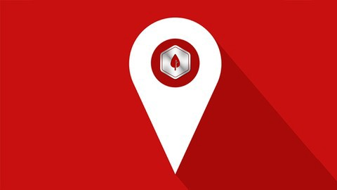Udemy - Local SEO for Small Businesses and Non-Profits