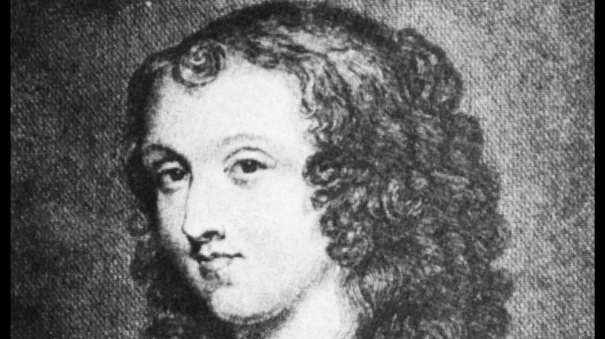 aphra behn essays The article presents an analysis of oroonoko, a novel by aphra behn it focuses on the role of the narrator in the novel, as it is considered to be the major unifying element of the novel aside from the title character furthermore, the author also discusses the realistic and the romantic elements.