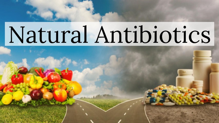 traditional antibiotics that can be found Scientists find that bacteria can use a dormancy period to develop antibiotic  found that this type of dormancy can  by traditional antibiotic.