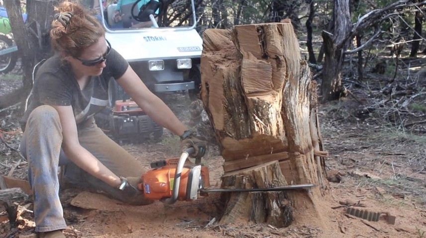 The most insightful stories about carving medium
