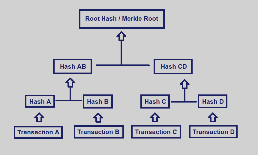 Release of Kelvin  - Dusk Network - Blockchain - Merkle-Tree toolkit