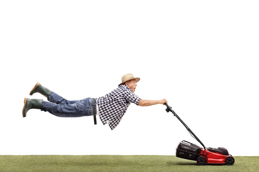 signs you need to hire a lawn mowing professional