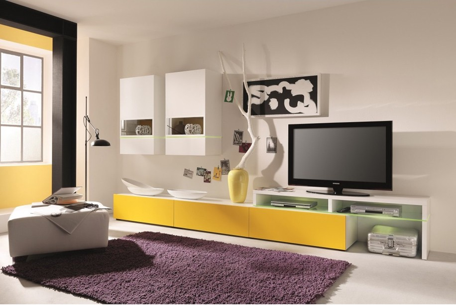 Wall Units for Functional Living Room - Furniture NYC