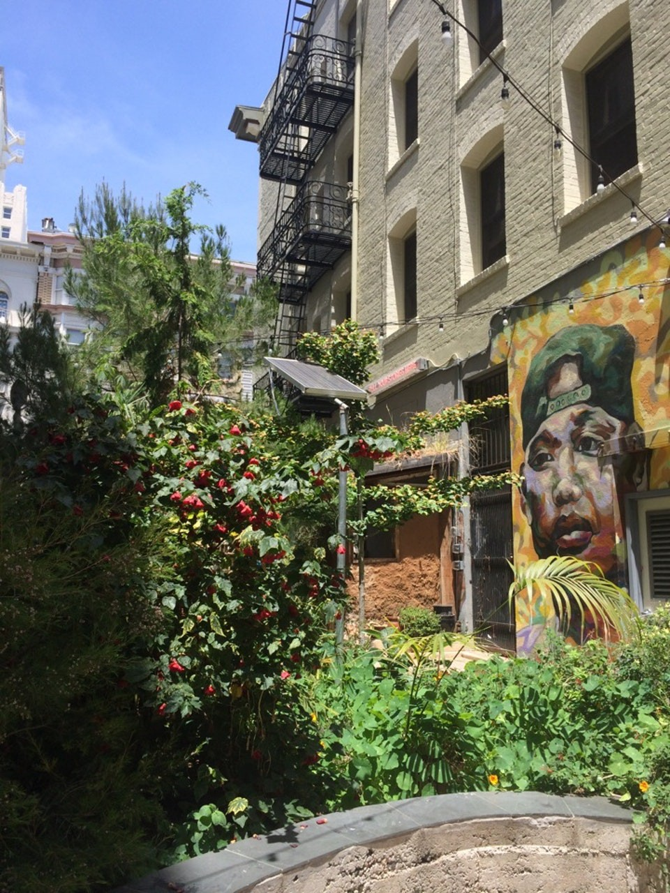 urban garden in San Francisco, CA