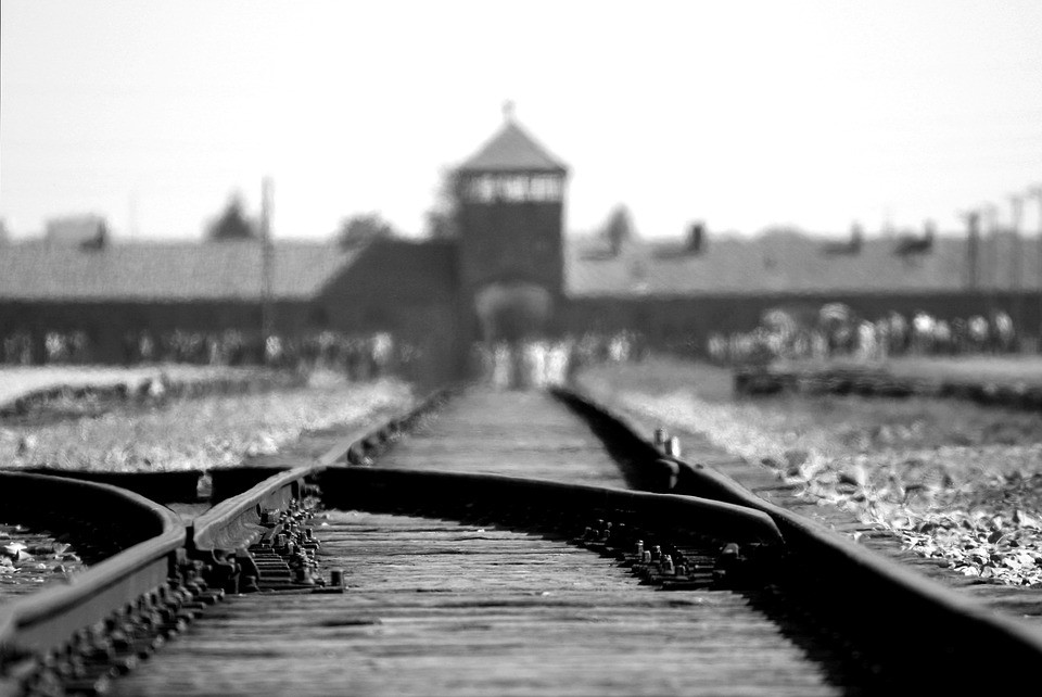 What You Probably Didn\'t Know About Auschwitz – Virginia Matteo – Medium