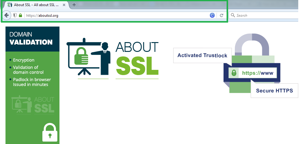What Is Domain Validated Dv Ssl Certificate Who Should Use It