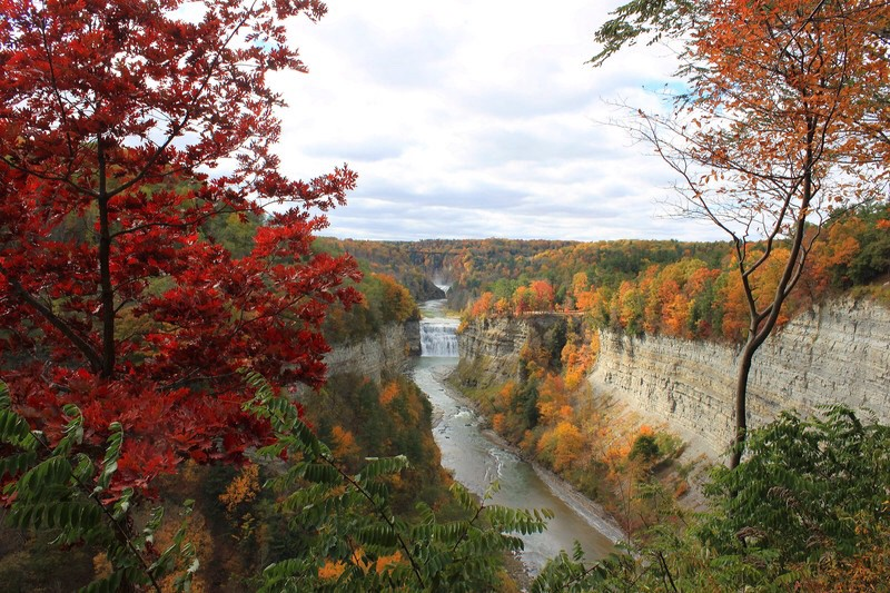 Autumnal tapestry of trees divided by a gorge cut by a waterfall and river beneath and between 2 steep escarpments